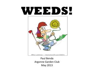 WEEDS!