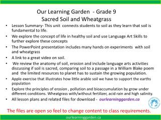 Our Learning Garden  - Grade  9  Sacred  Soil and Wheatgrass