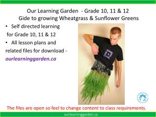 Our Learning Garden  - Grade  10, 11 & 12 Gide to growing Wheatgrass & Sunflower Greens
