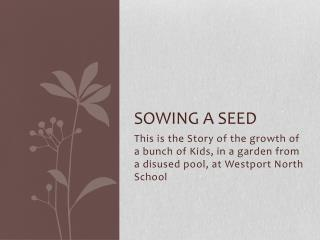 Sowing a Seed