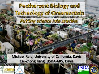 Postharvest Biology and Technology of Ornamentals