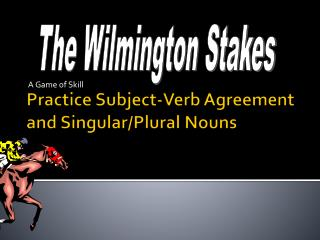 Practice Subject-Verb Agreement and Singular/Plural Nouns