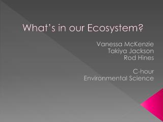 What's in our Ecosystem?