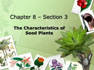 Chapter 8 – Section 3
