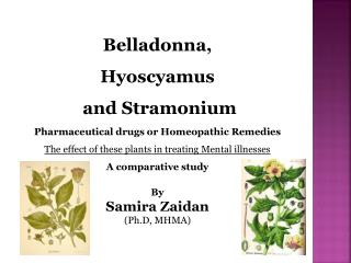 Belladonna ,  Hyoscyamus and  Stramonium Pharmaceutical drugs or Homeopathic Remedies The effect of these plants in trea