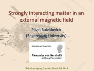 Strongly interacting matter in an external magnetic field