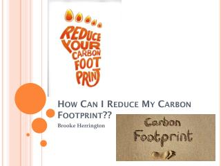 How Can I Reduce My Carbon Footprint??
