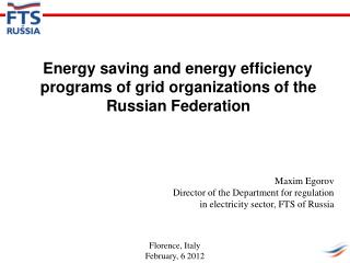 Energy  saving  and energy efficiency programs  of grid organizations of the Russian Federation