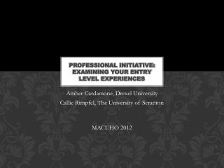 Professional  Initiative: Examining Your Entry Level Experiences