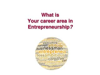 What is  Your career area in Entrepreneurship ?