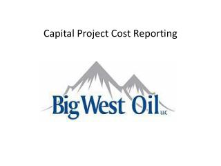 Capital Project Cost Reporting