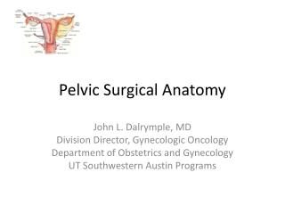 Pelvic Surgical Anatomy