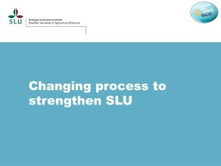 Changing  process to  strengthen  SLU