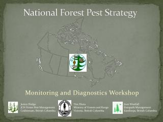 National Forest Pest Strategy
