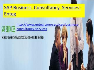 sap business consulting  services