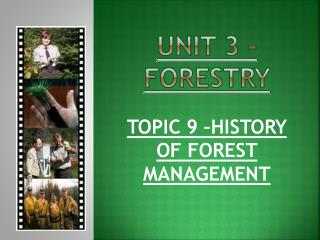 UNIT 3 - FORESTRY