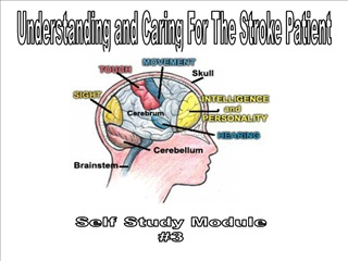 understanding and caring for the stroke patient self study module
