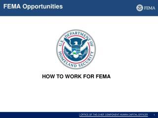 FEMA Opportunities