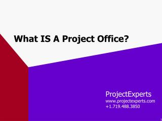What IS A Project Office?