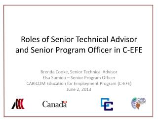Roles  of Senior Technical  Advisor and Senior Program Officer in C-EFE
