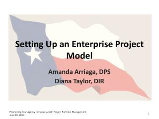 Setting Up an Enterprise Project Model