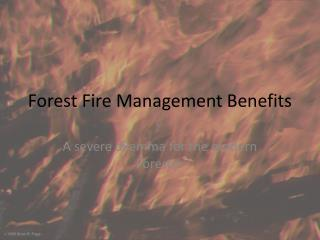 Forest Fire Management Benefits