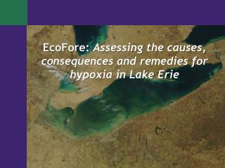 EcoFore:  Assessing the causes, consequences and remedies for hypoxia in Lake Erie