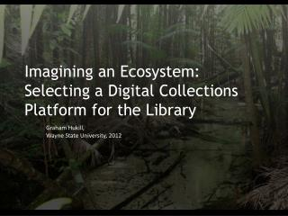 Imagining an Ecosystem: Selecting a Digital Collections Platform for the Library