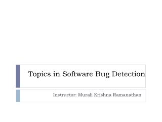 Topics in Software Bug Detection
