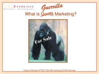 what is gorilla marketing