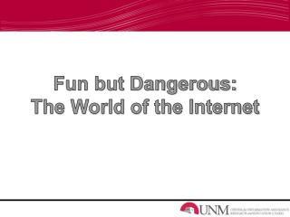 Fun but Dangerous: The World of the Internet