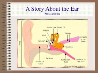A Story About the Ear Mrs. Jameson
