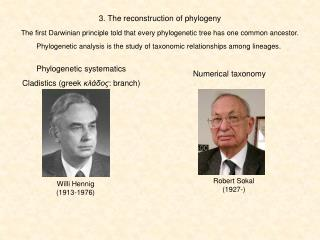 3. The reconstruction of phylogeny