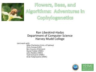 Flowers, Bees, and Algorithms:  Adventures in  Cophylogenetics