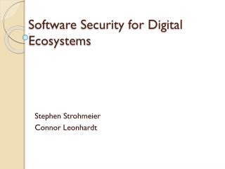 Software Security for Digital Ecosystems