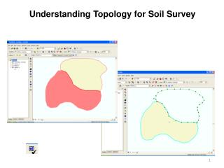 Understanding Topology for Soil Survey