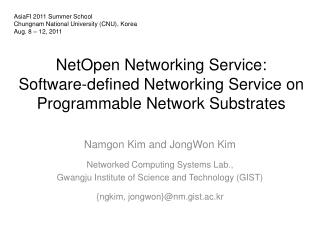 NetOpen  Networking Service:  Software-defined Networking Service on Programmable Network Substrates