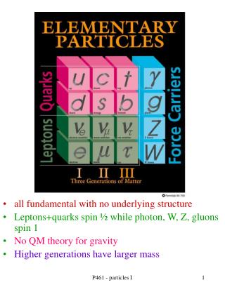 all fundamental with no underlying structure leptonsquarks spin   while photon, w, z, gluons spin 1 no qm theory for gra