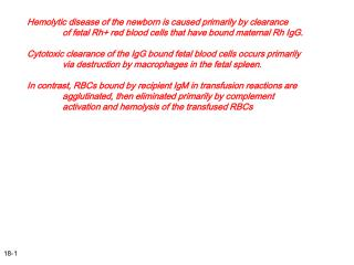 Hemolytic disease of the newborn is caused primarily by clearance 	of fetal Rh+ red blood cells that have bound maternal