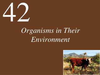 Organisms in Their Environment