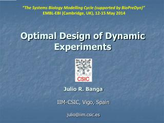 Optimal Design of Dynamic Experiments