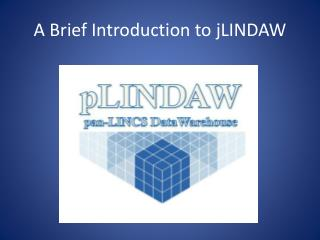 A Brief Introduction to  jLINDAW