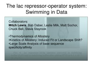 The lac repressor-operator system: Swimming in Data