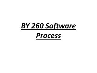 BY 260 Software Process