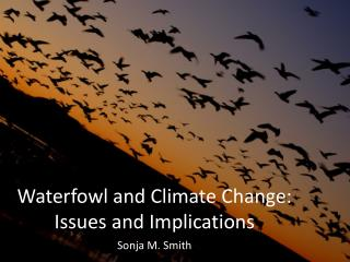 Waterfowl and Climate Change: Issues and Implications