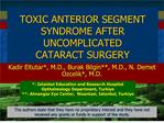 toxic anterior segment syndrome after uncomplicated cataract surgery