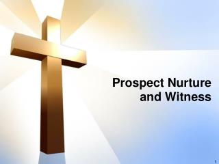 Prospect Nurture  and Witness