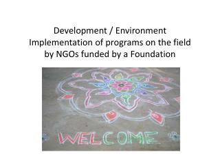 Development  /  Environment Implementation  of programs on the  field by  NGOs funded  by a  Foundation