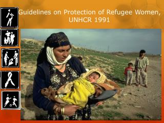 Guidelines on Protection of Refugee Women, UNHCR 1991