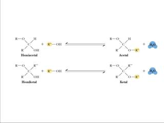 Figure 7.16 Acetals and ketals can be formed from hemiacetals and hemiketals, respectively.